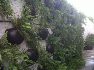 parede-verde
