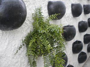 parede-verde1