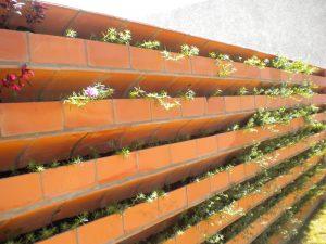 parede-verde11