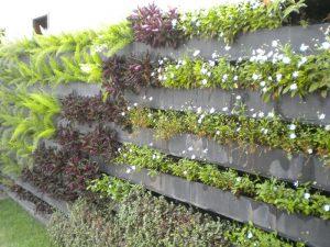 parede-verde4
