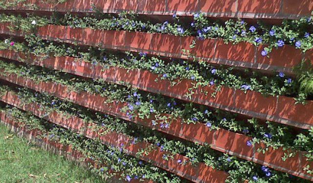 parede-verde71-940x375